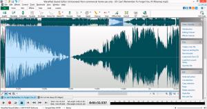 WavePad 12.23 Crack & Registration Code Full Download Latest Version