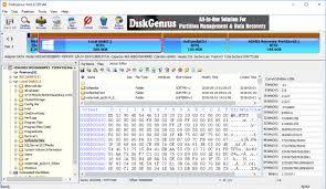 DiskGenius Professional Crack 5.4.0.1178 + Serial Key Full Download